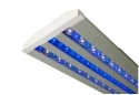 "Acan Lighting 18"" Series Double Blue LED Lighting Fixture 600DB-18S"