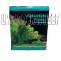 Aquarium Plants: The Practical Guide by Pablo Tepoot