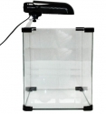 Jalli 5 Gallon Aquarium with 13 watt Solar Duo Boy Light Fix