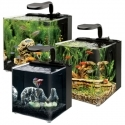 Evolve Aquariums