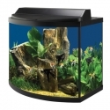 Bow Front Aquarium Kit