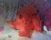 detail_11644_Red-Rhinopias.jpg
