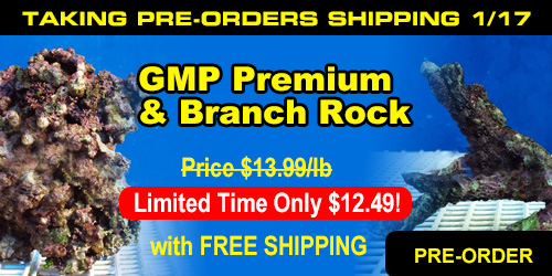 GMP Premium & Branch Rock