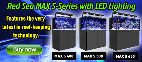 red sea max led lighting
