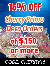 Cherry Primo Deco Florida Live Rock