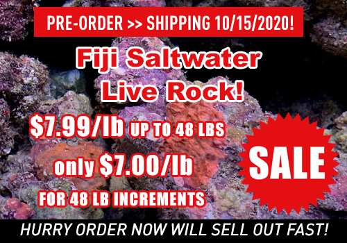 Live Rock n Reef | Wholesale Saltwater Aquarium Live Rock