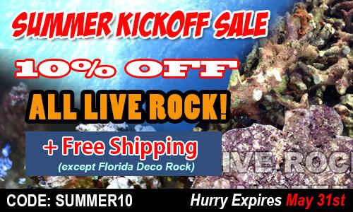 florida live rock sale
